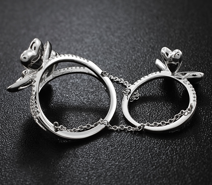 5af8b76b6126 Оригинальные двойные серебряные кольца купить в интернет магазине ...
